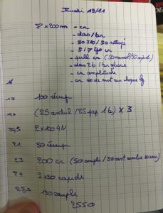/Entrainement natation du 19/11/2015